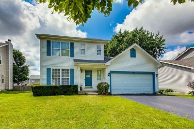Naperville Single Family Home For Sale: 923 Lowell Lane