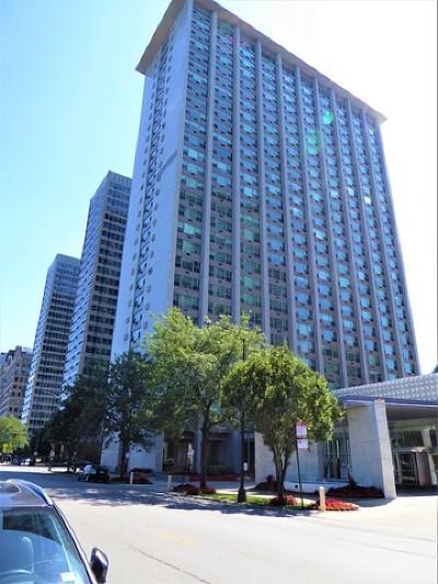 Condo/Townhouse New: 3600 North Lake Shore Drive #306