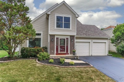 Single Family Home For Sale: 1903 Gibson Drive