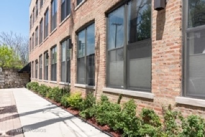 Condo/Townhouse For Sale: 1760 West Wrightwood Avenue #103