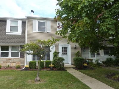 Schaumburg Condo/Townhouse For Sale: 2110 Stanley Court