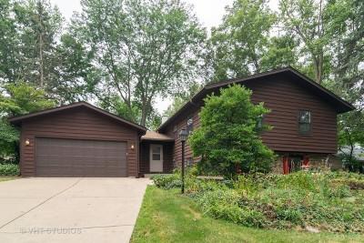 Winfield Single Family Home For Sale: 27w235 Oakwood Street