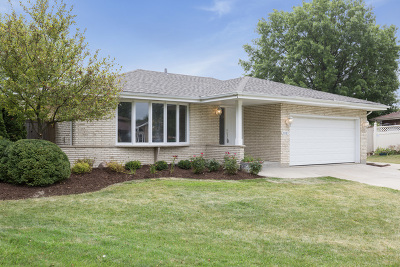 Tinley Park Single Family Home For Sale: 9003 Cypress Court