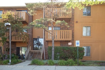 Roselle Condo/Townhouse For Sale: 724 Rodenburg Road #103