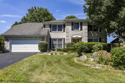 Burr Ridge IL Single Family Home New: $559,900