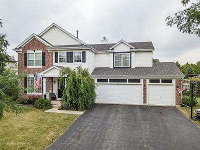 Oswego Single Family Home For Sale: 504 Woodland Way