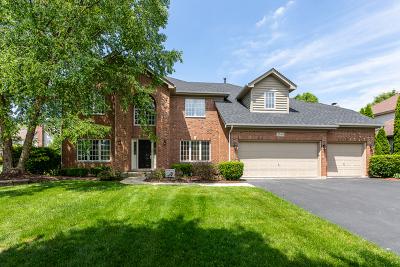 Naperville Single Family Home For Sale: 3108 Mistflower Lane