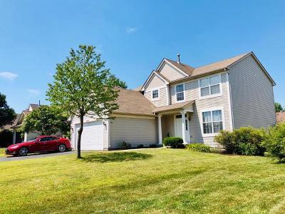 Plainfield Single Family Home For Sale: 24244 Apple Tree Lane