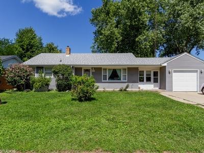 Bradley Single Family Home For Sale: 1147 Riverlane Drive