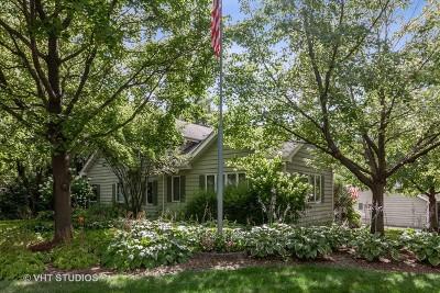 Wheaton Single Family Home For Sale: 2s420 Madison Street