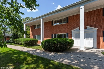 Hinsdale Condo/Townhouse New: 202 Chanticleer Lane