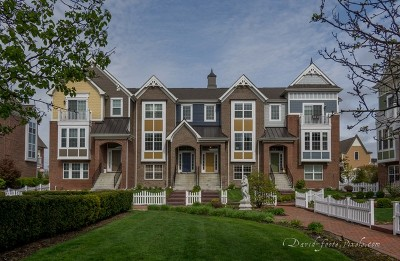 Naperville Rental New: 4195 Royal Mews Circle
