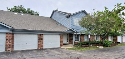 Schaumburg Condo/Townhouse Price Change: 1701 Chesapeake Lane #2
