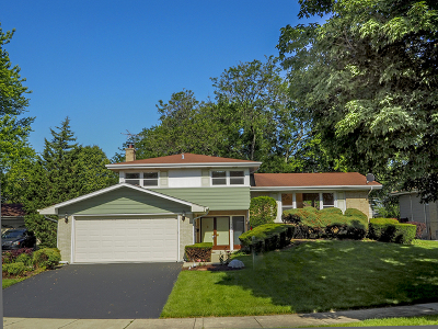 Arlington Heights Single Family Home New: 1912 North Spruce Terrace