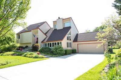 Plainfield Single Family Home For Sale: 17436 South Kay Court