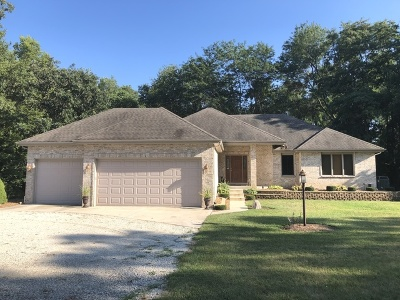 Custer Park Single Family Home For Sale: 18847 Bauer Road