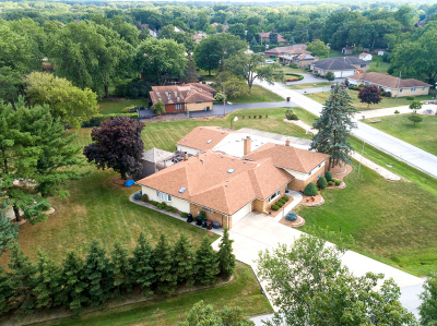 Tinley Park Single Family Home For Sale: 16611 Patricia Avenue