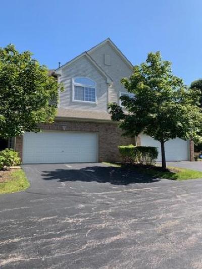 Hoffman Estates Condo/Townhouse New: 6083 Delaney Drive #20-5