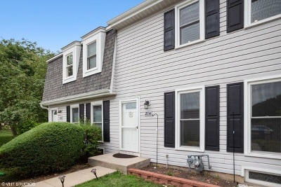 Roselle Condo/Townhouse New: 284 Rodenburg Road #11