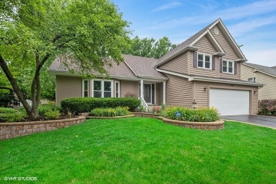 Naperville Single Family Home New: 1233 Ardmore Drive