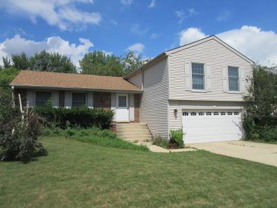 Schaumburg Single Family Home New: 109 North Walnut Lane