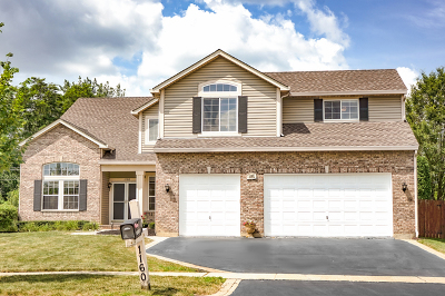 Mundelein Single Family Home For Sale: 1160 Westfield Way