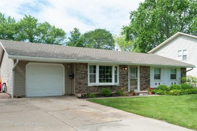 Schaumburg Single Family Home For Sale: 621 West Weathersfield Way