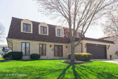 Schaumburg Single Family Home For Sale: 1023 Spring Cove Drive