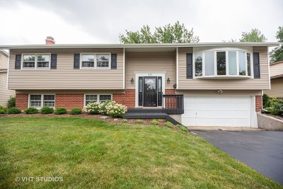 Arlington Heights Single Family Home New: 619 West Hackberry Drive