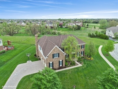 Hawthorn Woods Single Family Home For Sale: 16 Briar Creek Drive