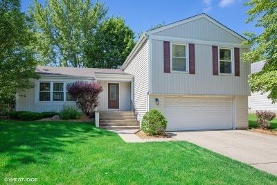 Buffalo Grove Single Family Home For Sale: 821 Thompson Boulevard