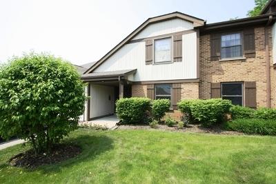 Condo/Townhouse New: 1374 Williamsburg Drive #D2