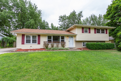 Schaumburg Single Family Home For Sale: 1323 Radcliffe Lane
