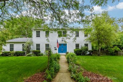 Naperville Single Family Home New: 1251 Elizabeth Avenue
