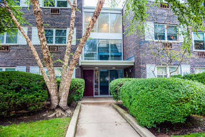 Skokie IL Condo/Townhouse New: $141,000