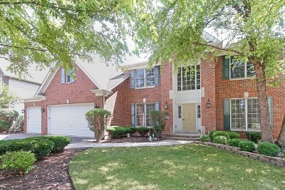 Kane County Single Family Home For Sale: 551 Terrace Lane