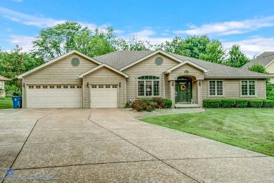 Palos Park IL Single Family Home New: $700,000