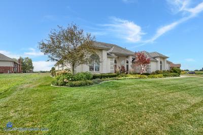Homer Glen Single Family Home For Sale: 14301 James Lane