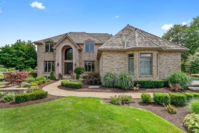 Orland Park Single Family Home New: 151 Silo Ridge Road North