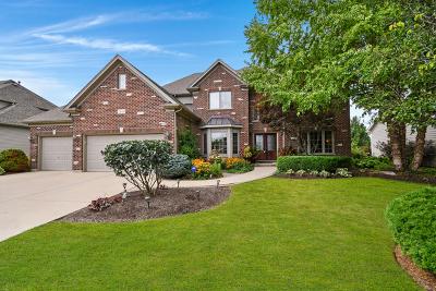 Sugar Grove Single Family Home For Sale: 1010 Oak Street