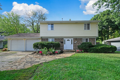 Schaumburg Single Family Home For Sale: 1925 West Schaumburg Road