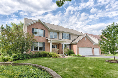 Hoffman Estates Single Family Home New: 5687 Angouleme Lane