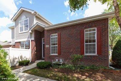 Tinley Park Condo/Townhouse New: 18539 Dearborn Court