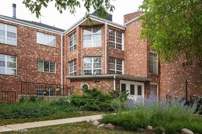 Elk Grove Village Condo/Townhouse New: 540 Biesterfield Road #205