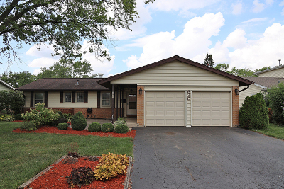 Elk Grove Village Single Family Home New: 620 Walnut Lane