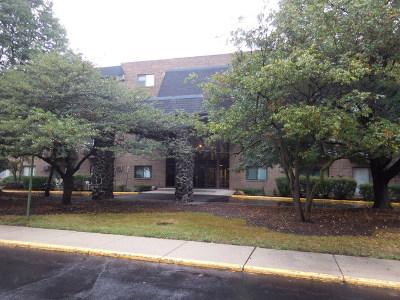 Addison Condo/Townhouse New: 239 North Mill Road #308