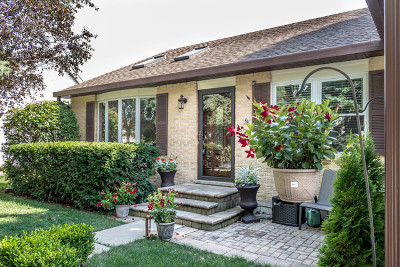Buffalo Grove Single Family Home For Sale: 1341 Rose Boulevard
