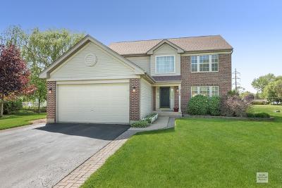 Oswego Single Family Home New: 226 Angela Circle