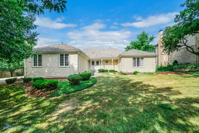 Orland Park Single Family Home For Sale: 15116 Ginger Creek Lane