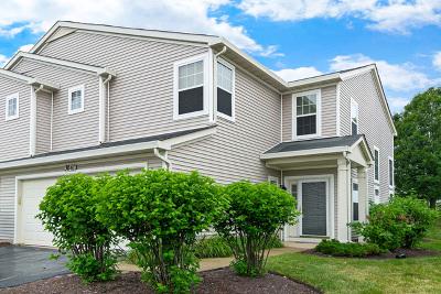 Plainfield Condo/Townhouse For Sale: 3041 Creekside Drive